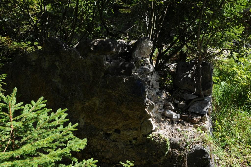 Überwucherte Mauerreste zeugen noch von den einstigen Nebengebäuden